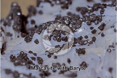 Marcasite with Baryte