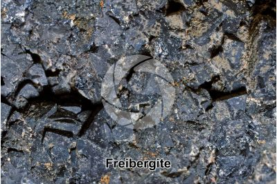 Freibergite