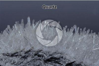 Quartz. Druse