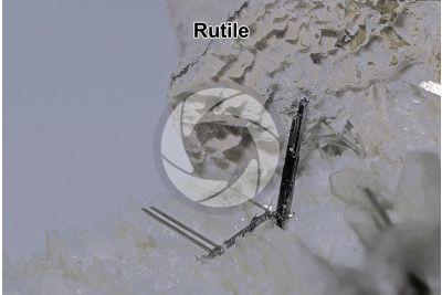 Rutile