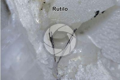 Rutilo