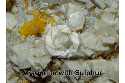 Aragonite with Sulphur