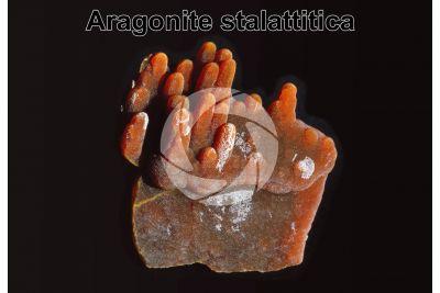 Aragonite stalattitica