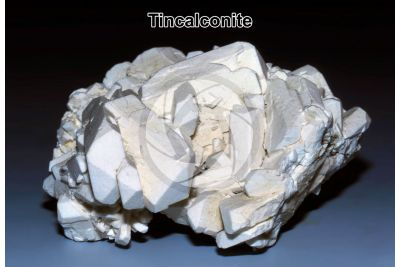 Tincalconite