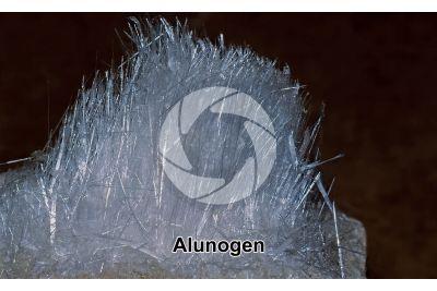 Alunogen