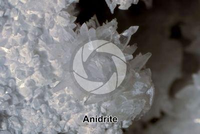 Anidrite