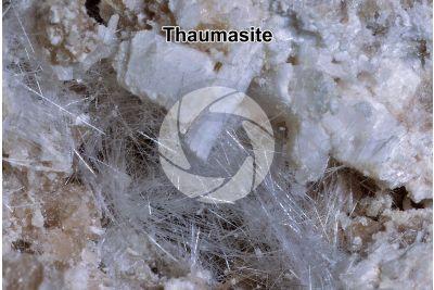 Thaumasite