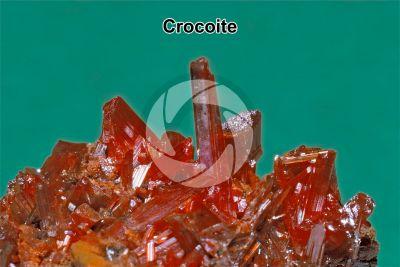 Crocoite