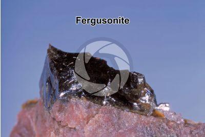 Fergusonite