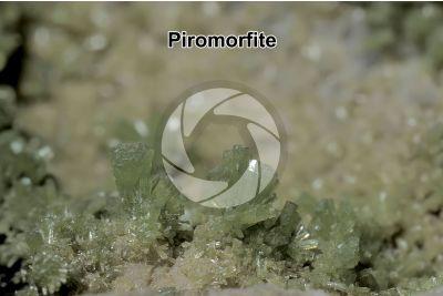 Piromorfite