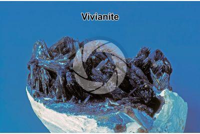 Vivianite