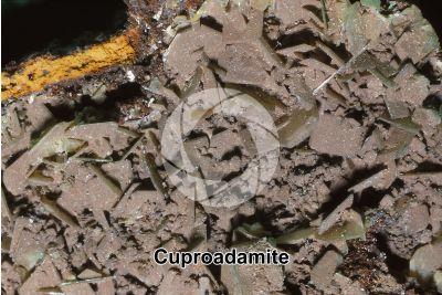 Cuproadamite