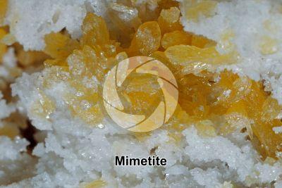 Mimetite