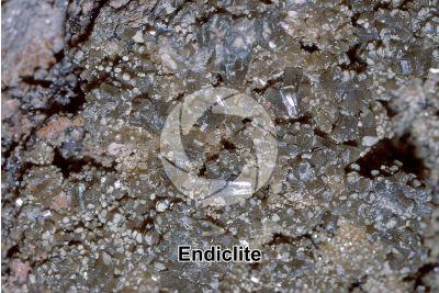 Endiclite
