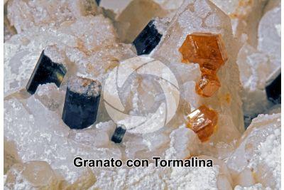 Granato con Tormalina