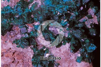 Dioptasio