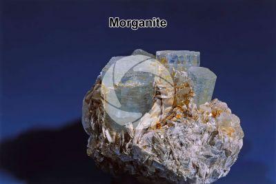 Morganite. Berillo