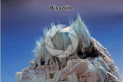 Bissolite