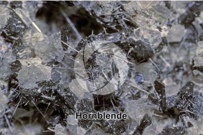 Hornblende