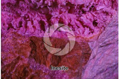 Inesite