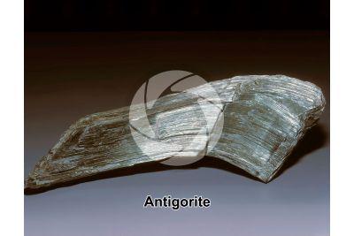 Antigorite