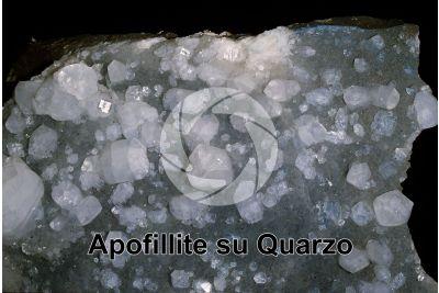 Apofillite su Quarzo