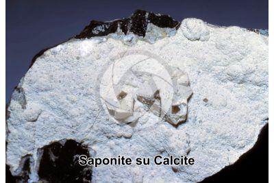 Saponite su Calcite