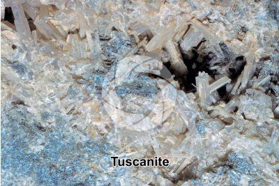 Tuscanite