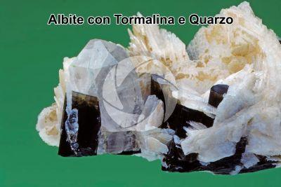 Albite con Tormalina e Quarzo