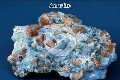 Anortite
