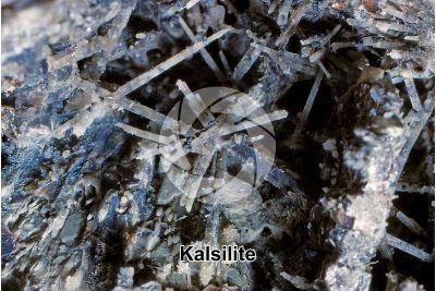 Kalsilite