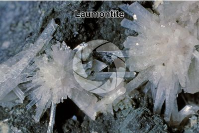 Laumontite