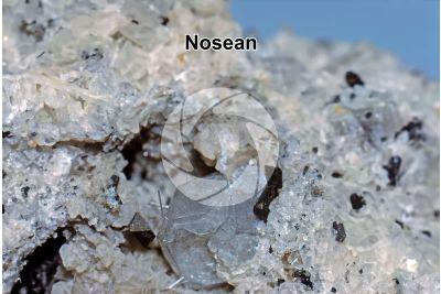 Nosean