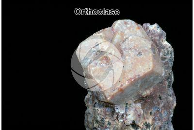 Orthoclase