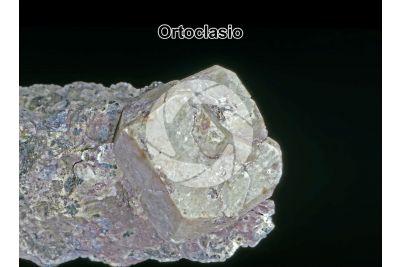 Ortoclasio