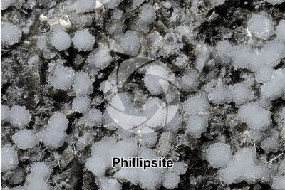 Phillipsite